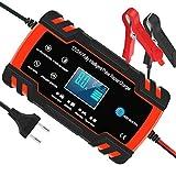 Yomao Autobatterie Ladegeräte 8A 12V/24V...