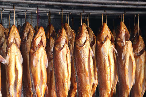 Fisch räuchern