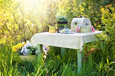 Gartengestaltung & Gartenzubehör